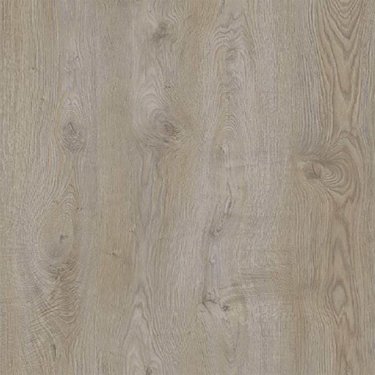 Silver Oak M8015 10mm Laminate Floors - Chalet Collection Image