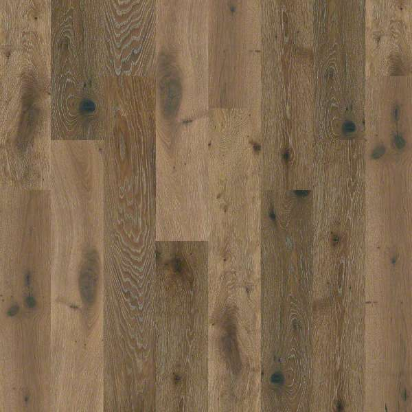 Shaw Floors Castlewood Oak Royal Collection
