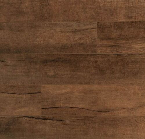 Symphony Concerto Caruso Maple 12mm Laminate Floors AC3 1